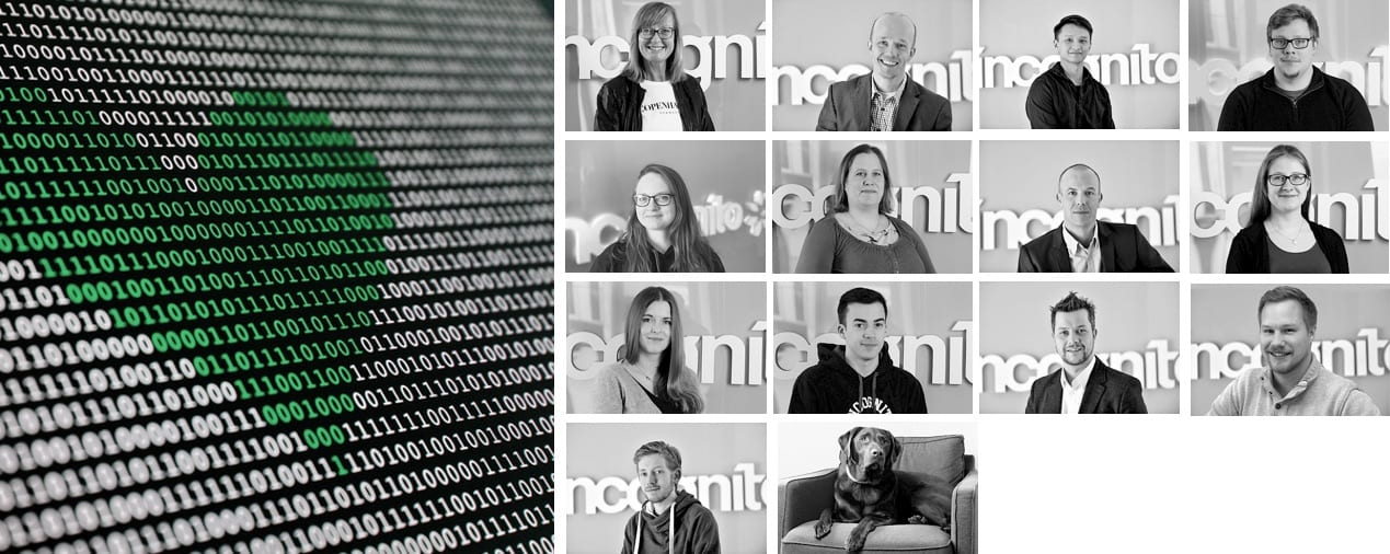incognito digitale lösungen - Team